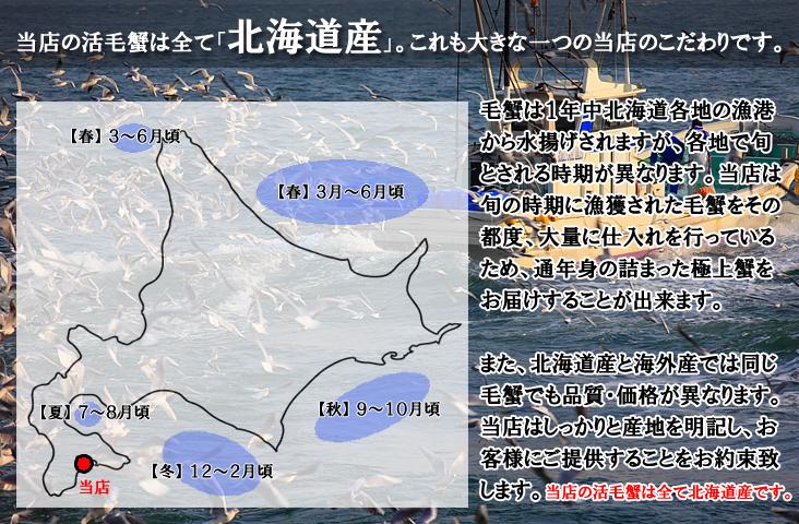 活毛蟹は全て北海道産